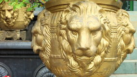 DAMBULLA, SRI LANKA - FEBRUAR 2014: Spurhaltung des Schusses des dekorativen goldenen Löwevase am goldenen Tempel von Dambulla, e stock video