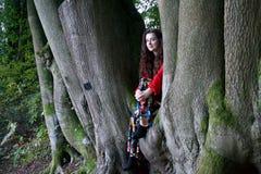 Dame à la mode s'asseyant dans un arbre de hêtre photo libre de droits