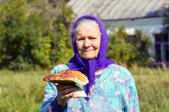 Dame âgée avec des champignons dans des ses mains La grand-mère recueille des champignons dans le village Photographie stock libre de droits