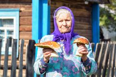 Dame âgée avec des champignons dans des ses mains La grand-mère recueille des champignons dans le village Image stock