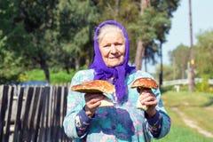 Dame âgée avec des champignons dans des ses mains La grand-mère recueille des champignons dans le village Images libres de droits