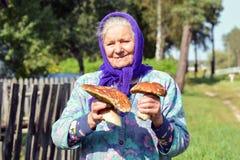 Dame âgée avec des champignons dans des ses mains La grand-mère recueille des champignons dans le village Image libre de droits