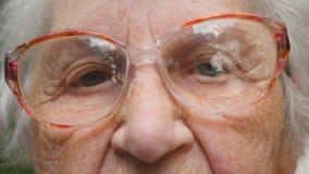 Dame âgée dans des lunettes regardant dans l'appareil-photo Fermez-vous vers le haut du portrait de la grand-mère Mouvement lent banque de vidéos