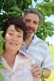 Dame âgée de embrassement de vieil homme de dos Photo libre de droits
