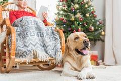 Dame âgée et l'animal familier gentil passent le temps ensemble Image stock