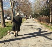 Dame âgée marchant avec son chien Images stock
