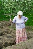 Dame âgée travaille dans un jardin Photo libre de droits
