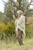 Dame âgée triste en parc Image stock