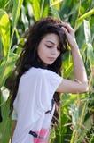 Dame étonnante de brune avec de longs cheveux bouclés, parmi le champ de maïs Photos libres de droits