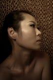 Dame asiatique Image libre de droits