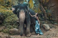 Dame assez jeune caressant un éléphant Photographie stock libre de droits