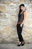 Dame attirante Image stock
