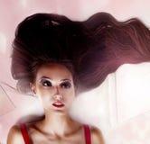 Dame attirante de brune Photographie stock libre de droits