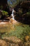 Dame Bath Falls - Mt-Büffel Stockbild