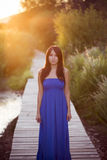 Dame in blauwe kleding Stock Afbeeldingen