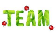 Dame Bug dat Team eet vector illustratie