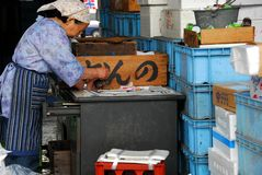 Dame de boutique de poissons Photographie stock libre de droits
