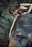Dame de brune frottant un éléphant Photo stock
