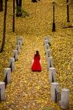 Dame in de herfstbos Stock Afbeelding