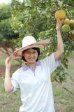 Dame de jardinier photographie stock