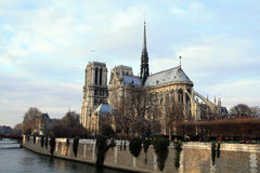 dame de notre Paris Image stock