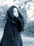 Dame des Holzes #6 Lizenzfreies Stockbild