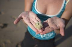 Dame die op zee shell kijkt Stock Afbeeldingen