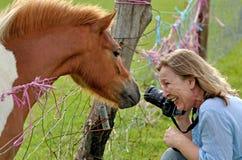 Dame, die am unverschämten Pony über Bauernhofdrahtzaun lacht Stockfotografie