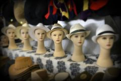 Dame in een hoed stock afbeeldingen