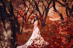 Dame in een kleding van de luxe weelderige roze pastelkleur Stock Foto