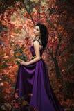 Dame in een luxe weelderige purpere kleding Stock Afbeelding