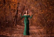 Dame in een luxe weelderige smaragd dres Stock Foto