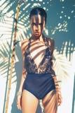 Dame fascinante dans le collant de danseur de dentelle Photos libres de droits