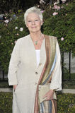 Dame Judi Dench Stock Images