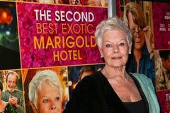 Dame Judi Dench Royalty Free Stock Photo