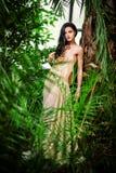 Dame magnifique Photo stock