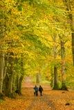 Dame Marys Walk, Crieff, Schottland, Großbritannien Lizenzfreies Stockbild