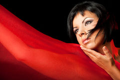 Dame met rood Royalty-vrije Stock Afbeelding