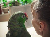Dame mit einem grünen Papageien, der ein Buch liest lizenzfreie stockbilder