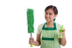 Dame mit Reinigungsprodukten Stockfoto