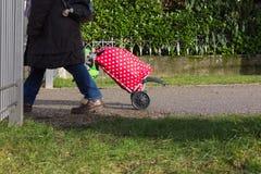 Dame mit roter Laufkatze stockfoto