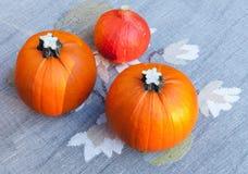 Dame Pumpkin Stock Afbeeldingen