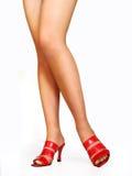 Dame in rood Royalty-vrije Stock Foto