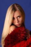 Dame in rood Royalty-vrije Stock Foto's