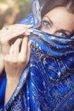 Dame in Sari Stock Afbeeldingen