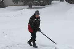 Dame Shoveling Snow Royalty-vrije Stock Foto