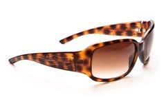 Dame-Sonnenbrillen stockfotos