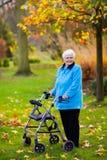 Dame supérieure avec un marcheur en parc d'automne Image stock