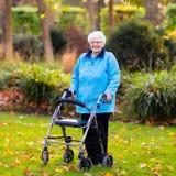 Dame supérieure avec un marcheur en parc d'automne Images stock