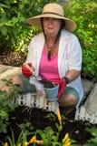 Dame supérieure effectuant le jardinage autour de la maison Photo stock